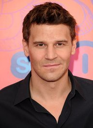 Image of David Boreanaz