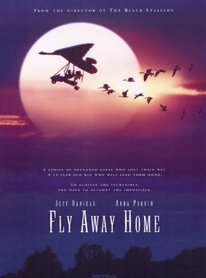 Poster of Fly Away Home