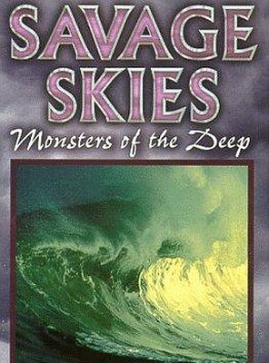 Poster of Savage Skies