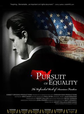 Poster of Pursuit of Equality