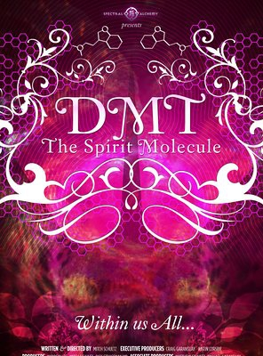Poster of DMT: The Spirit Molecule