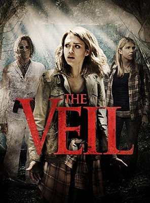 Poster of The Veil
